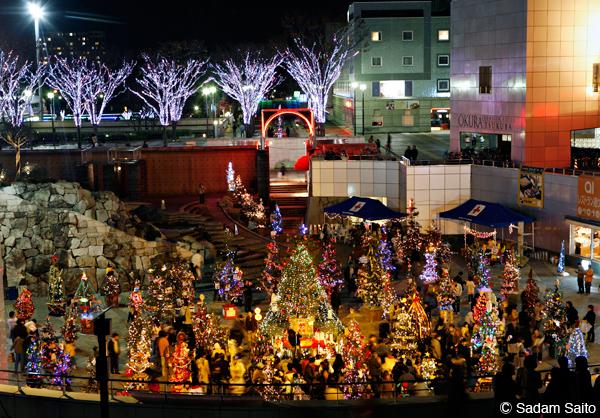 100本のクリスマスツリー会場の様子